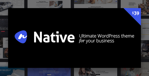 WordPress Theme - Native